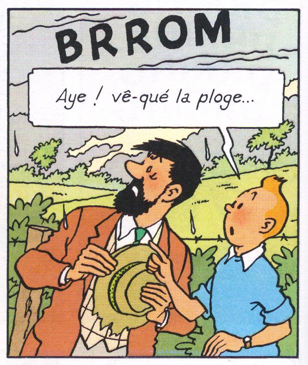 Haddock, Tintin et la météo